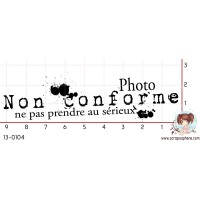 TAMPON PHOTO NON CONFORME par Choupyne