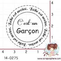 TAMPON CERCLE C EST UN GARCON par Lily Fairy