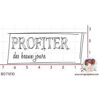 TAMPON PROFITER DES BEAUX JOURS par Ln