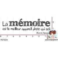 TAMPON MEMOIRE par Choupyne