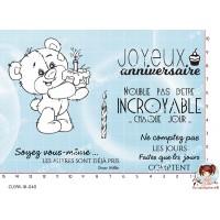 6 TAMPONS TRANSPARENTS ANNIVERSAIRE par Lily Fairy