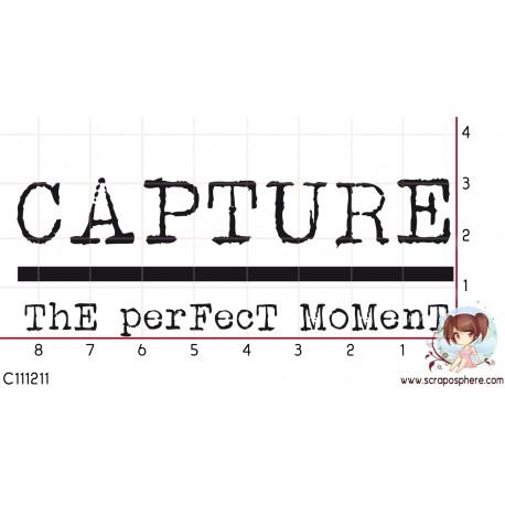 TAMPON CAPTURE THE PERFECT MOMENT par Laetitia67