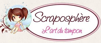 Scraposphère